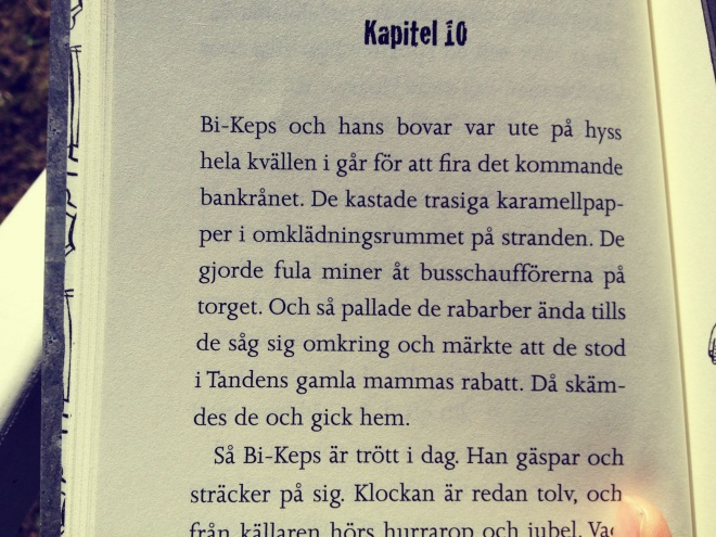 bild-13